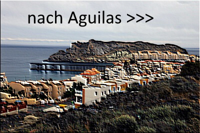 Aguilas Link
